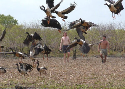 andrew-ucles-wild-tours-birds-scatter
