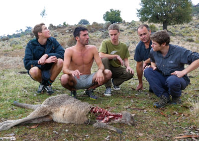 andrew-ucles-wild-tours-carcass