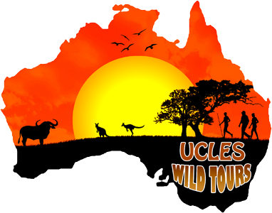 Ulces Wild Tours Logo